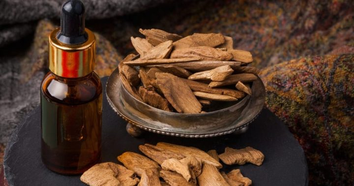 Basic information about oud